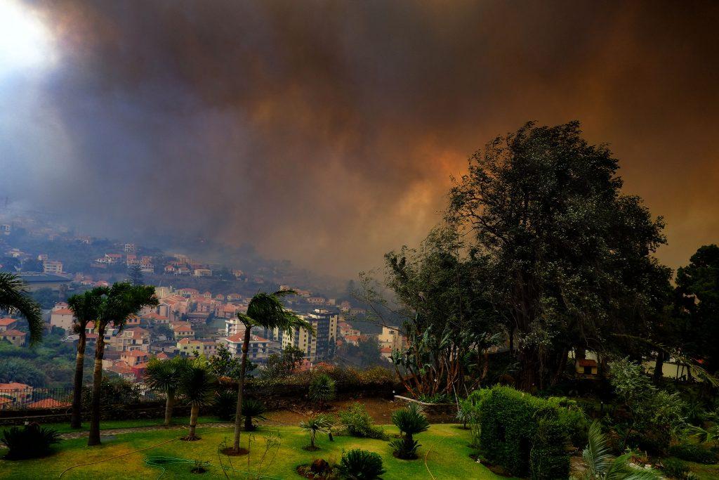 Madeira, 2016