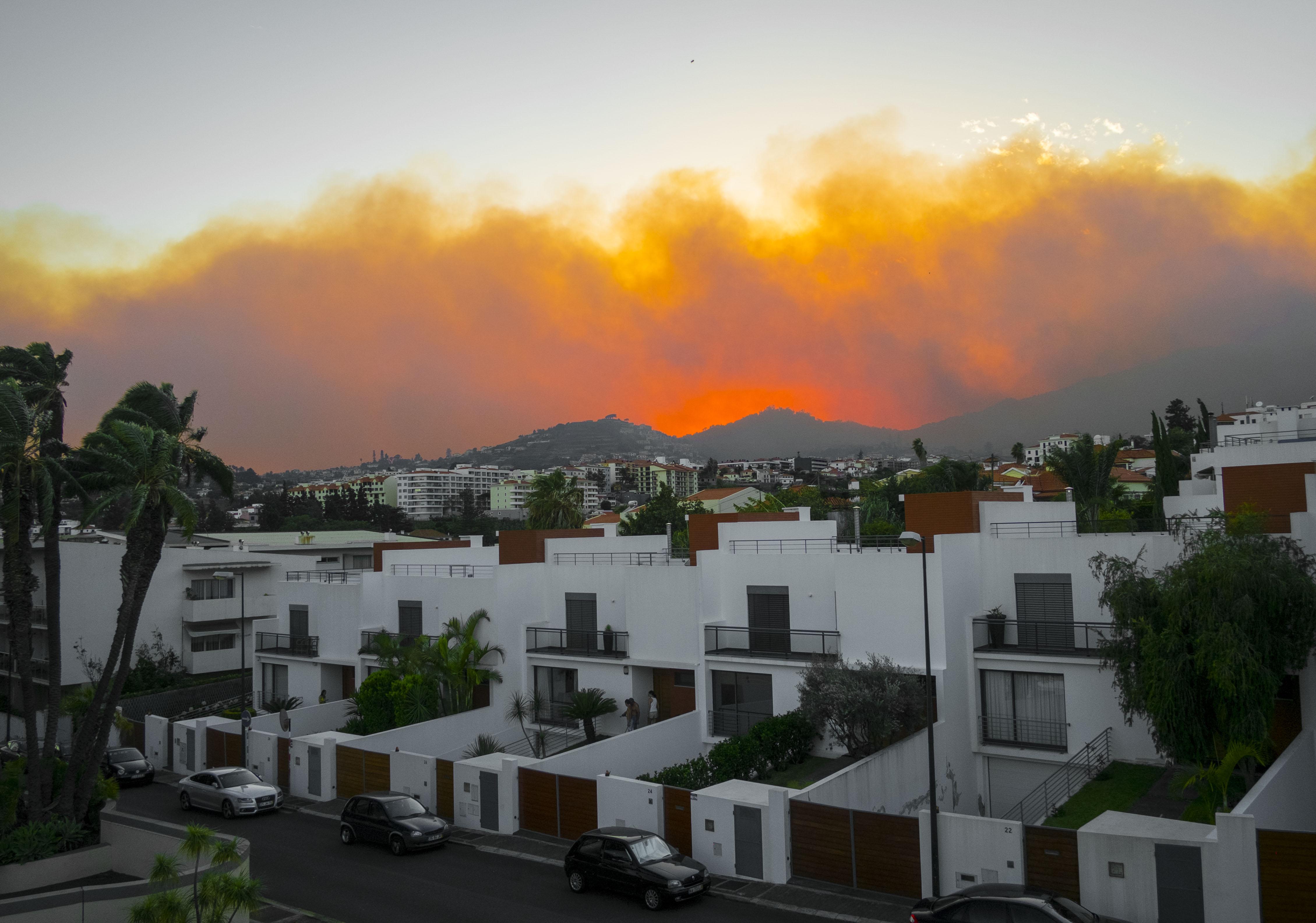 Madeira fires